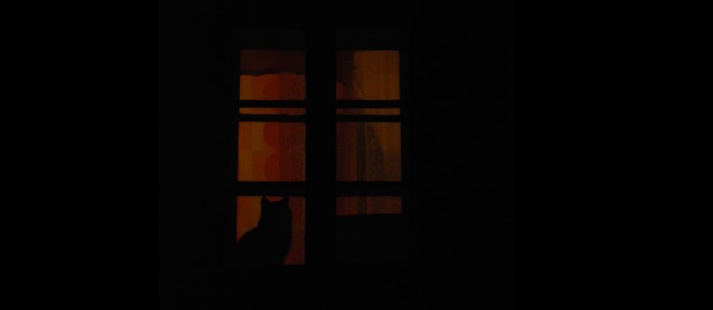 02 horror vacui
