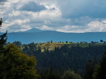 Krajobraz - Karpaty Ukraińskie